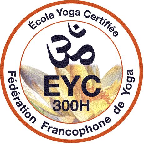 Formation professionnel professoral du Hatha au Vinyasa yoga accréditée et certifiée par la Fédérations Francophone de Yoga